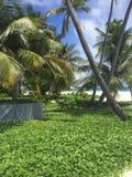 Время пляжа Стоковые Фотографии RF
