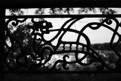 Время дракона Стоковые Изображения RF