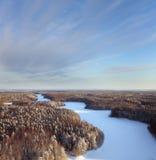 время реки пущи дня морозное Стоковое Фото