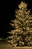 время рождества Стоковые Фото