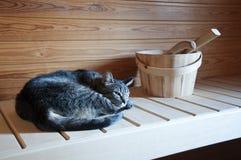 Время сауны Стоковая Фотография