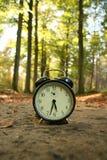 время траты природы Стоковое Изображение