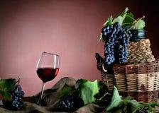 время хлебоуборки виноградины Стоковая Фотография RF