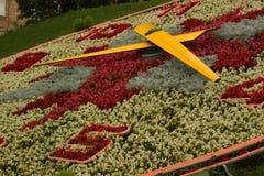 Время цветков Стоковая Фотография