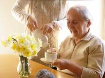 Время чая весной стоковые фотографии rf
