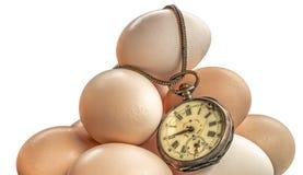 Время яичек Стоковая Фотография RF