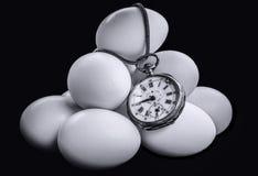 Время яичек Стоковое Изображение