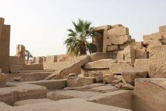 Время Luxor Temple посуточно в Египте Стоковые Изображения RF