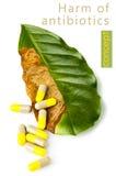 Вред антибиотических пилюлек Стоковая Фотография RF