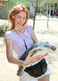 вручает больших детенышей женщины черепахи Стоковое Изображение
