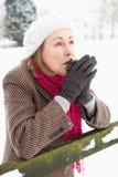 вручает женщину старшего снежка стоя грея стоковые фото