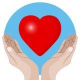 вручает предлагать сердца Стоковые Фотографии RF