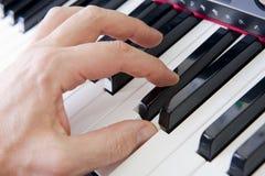 вручает рояль Стоковая Фотография RF