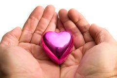 вручает удерживание сердца Стоковые Фото