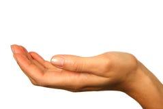 вручите белизну изолированную человеком Стоковая Фотография RF