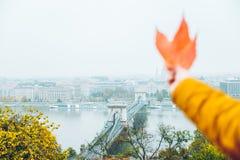 Вручите владению желтые лист с старым eauropean городом на предпосылке стоковое фото