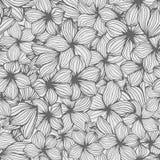 Вручите вычерченное тропическое яркое deliciosa monstera цветков, безшовную картину Стоковые Изображения