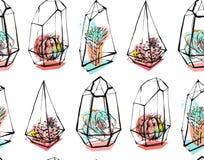 Вручите вычерченному конспекту вектора безшовную картину с грубым terrarium и суккулентными заводами в пастельных цветах на белиз Стоковое Фото