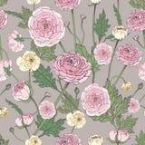 Вручите вычерченную винтажную флористическую красочную безшовную картину с цветком лютика Стоковая Фотография RF