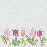 Вручите вычерченную деревянную имитационную текстурированную предпосылку с цветками тюльпана иллюстрация штока