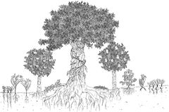 Вручите вычерченную иллюстрацию эскиза схемы permaculture стоковые изображения rf