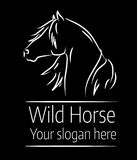 Вручите вычерченную иллюстрацию вектора дикой лошади на черной предпосылке Стоковая Фотография