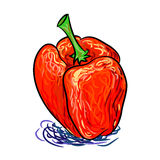 Вручите вычерченные красные перцы, абстрактные покрашенные живописные красные перцы изолированные на белой предпосылке Стоковое фото RF