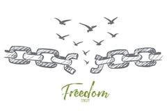 Вручите вычерченные сломанные цепь и стадо птиц над им Стоковое Изображение