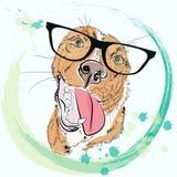 Вручите вычерченный портрет моды битника мальчика собаки изолированного на белизне Стоковое Изображение RF