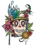 Вручите вычерченный череп иллюстрации цвета в цветках и пер Печать для футболок иллюстрация вектора