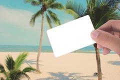 Вручите владению пустую карточку на изображении кокосовой пальмы на пляже app Стоковое фото RF