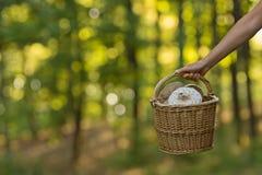 Вручите держать корзину полный грибов и запачканной предпосылки Стоковое Фото