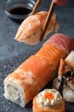 Вручите держать суши палочек с креветкой на предпосылке серого цвета Стоковая Фотография RF