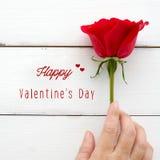 Вручите держать красную розу и счастливое слово дня ` s валентинки на белом wo Стоковое фото RF