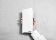 Вручите держать пустой белый буклет брошюры рогульки в руке Стоковые Фото
