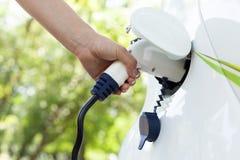 Вручите держать электрический plug-in для поручать электрический автомобиль стоковое изображение