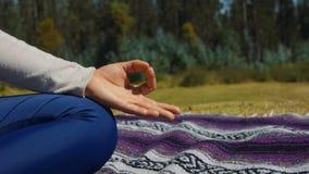 Вручите деталь женщины сидя делая йогу в парке Стоковые Фотографии RF