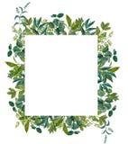Вручите покрашенную рамку листьев акварели, совершенную для поздравительной открытки, свадьбы приглашает, ремесла Стоковые Изображения RF