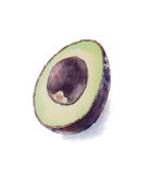 Вручите покрашенный авокадо акварели, авокадо haas, отрезанный авокадо Стоковое Изображение RF