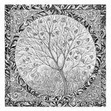 Вручите чертеж, графическое изображение на цвести дерева темы Стоковые Изображения