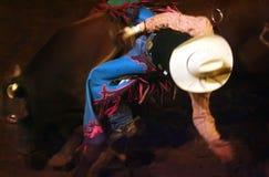 всадник быка Стоковая Фотография