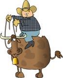 всадник быка Стоковые Изображения