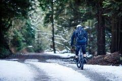Всадник горного велосипеда стоковые изображения rf