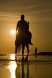 всадник лошади пляжа Стоковые Изображения RF