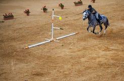 Всадник на horseback Стоковое Фото