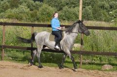 Всадник Horseback Стоковые Фото
