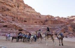 Всадники верблюда перед римским амфитеатром Petra Иордан Стоковое Фото