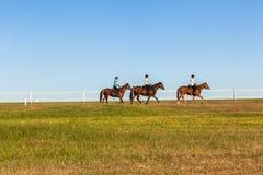 Всадники женщин лошадей Стоковые Фотографии RF
