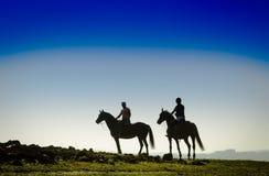 Всадники на поле Стоковое Изображение RF