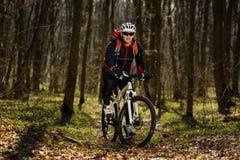 Всадник в действии на встрече горного велосипеда фристайла Стоковое Изображение RF